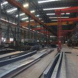 Costruzione del gruppo di lavoro della struttura d'acciaio di Professinal con la gru
