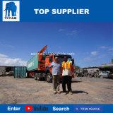 Titan Sidelifter 40FT seitlicher Laden-Versandbehälter-Transport-Seiten-Ladevorrichtungs-Schlussteil für Verkauf