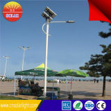 Nuovo Products sulla Cina Market Solar Energy Street Light con 6m Palo