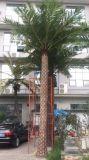 Palmeira de prata artificial da tâmara feita da fibra de vidro para a decoração
