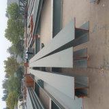 Nuevo almacén del marco de acero del estilo