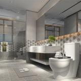 Het Bouwmateriaal verglaasde de Binnenlandse Ceramische Tegel van de Muur met ISO
