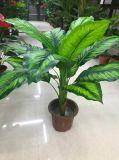 인공적인 플랜트 나무가 가정 당 디자인에 의하여 장식 로즈 꽃이 핀다