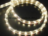 220V 120V 1m 물집 장비 LED 밧줄 빛 (SMD3528- 60LED)