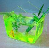 Os peixes deram forma ao tanque de peixes fixado na parede acrílico personalizado plexiglás da cor
