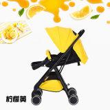 Fabrik-Großhandelsgroßverkäufe, faltbare, waschbare, leistungsfähige Aluminiumlegierung-Baby-Spaziergänger
