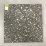 Natural/Style européen Lappato Terrazzo 600x600mm Faïence (TER608-charbon)
