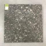 Natürliche/Porzellan-Fliese des Lappato europäische Artterrazzo-600X600mm (TER608-COAL)