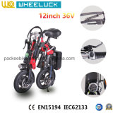12 Zoll-Minifalz-elektrisches Fahrrad mit schwanzlosem Bewegungsvorlagen-Schwarzem