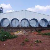 Casa de la Pollería prefabricados con estructura de acero de la luz de diseño en One-Stop
