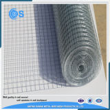 Acciaio inossidabile o rete metallica saldata 10X10 galvanizzata