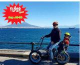 脂肪質のタイヤ浜の巡洋艦の電気バイク