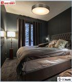 De ronde Oppervlakte zet de Moderne Decoratieve LEIDENE Verlichting van het Plafond op