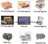 가득 차있는 자동적인 계란 쟁반 기계 가격