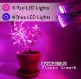 La testa doppia LED coltiva gli alti rendimenti che chiari 10W LED coltivano la lampada con 360 il Gooseneck registrabile LED coltiva gli indicatori luminosi per le piante d'appartamento, crescita della pianta,