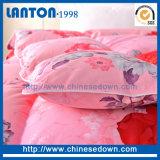 L'oie normale de rapiéçage d'usine de la Chine piquent vers le bas