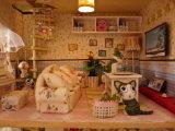 2018 het In het groot Houten MiniatuurHuis DIY van de Fabriek