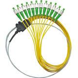 Sc/APCのコネクターが付いている12色分けされたファイバーの光学ピグテール