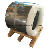 Bobine en acier inoxydable 304 fournis par Tisco