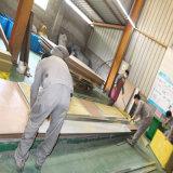 Rockwool Zwischenlage-Panel für Cleanroom