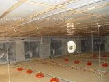 3段階の換気扇の養鶏場の換気の冷却ファン