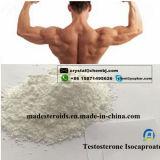 근육 성장 15262-86-9를 위한 자연적인 남성 성 스테로이드 테스토스테론 Isocaproate