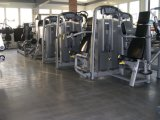 Biceps Curl Tz-6013/Muscle Strength Equipment/ Gym Fitness Machine