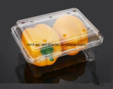 عالة مستهلكة بلاستيكيّة واضحة شفّافة ثمرات قوالب خبز طعام يعبّئ وعاء صندوق [بكينغ بوإكس]