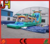 プールのスリップ「nのスライド膨脹可能な水スライドのジャンパーが付いている膨脹可能な二重車線のスリップのスライド