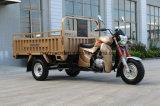 150cc EEC를 가진 공기에 의하여 냉각되는 엔진 3 짐수레꾼 화물 세발자전거