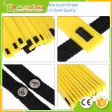 Großhandelsgeschwindigkeits-u. Beweglichkeits-Trainings-Strichleiter mit schwarzem tragendem Kasten