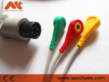 Cable compatible galés de Allyn 6pin ECG
