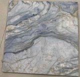 3D Inkjet die de Ceramische BinnenTegel van de Vloer van de Muur schilderen