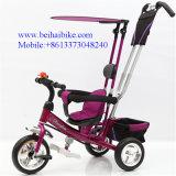 Triciclo de niños respetuoso del medio ambiente del triciclo del bebé de los niños de los PP de la fuente de la fábrica