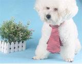 Legame di arco accessorio dell'animale domestico del gatto del cane del piccolo animale domestico all'ingrosso per gli animali domestici