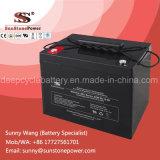 De diepe AGM van de Cyclus Batterij van de Macht van de Opslag van de Batterij 12V 80ah