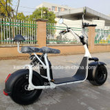 gomma grassa 1000W 60V Harley del motorino elettrico fuori strada