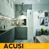 De in het groot Aangepaste Moderne Keukenkasten van de Lak van het Triplex van de Stijl (ACS2-L04)