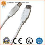 Câble de connecteur de caractéristiques de câble par chargeur de téléphone d'Apple