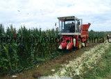 トウモロコシの収穫機のためのターボチャージおよび内側の冷却されたディーゼル機関