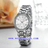 여자 손목 시계 (WY-019C)를 주문을 받아서 만드는 최신 판매 시계