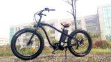 Bicis eléctricas de Li de la célula con el neumático gordo 500W