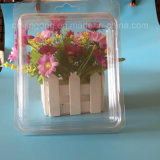 물집 수송용 포장 상자를 위한 명확한 PVC 조가비 상자