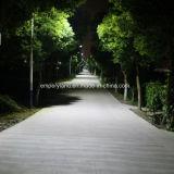 20W IP68 5m улицы солнечного света (DZS-05-20W)
