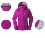 As mulheres Sport Sportwear Outwear quebra-vento casaco de Inverno