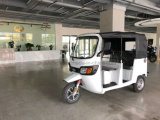 3000W ACモーターを搭載する電気乗客の三輪車