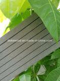 Outdoor Flooring Carte WPC Decking avec anti- Termite