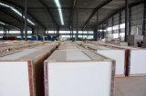 Poudre de gypse plâtre Conseil Gfg Taux d'incendie de placoplâtre de cloisons sèches (G86)
