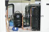 Cámara de pruebas climáticas ambientales con las pruebas de temperatura y humedad