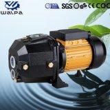 Dpシリーズ自動プライミング深い井戸の水ポンプ
